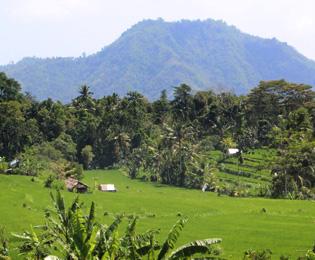 シドゥメン村の画像
